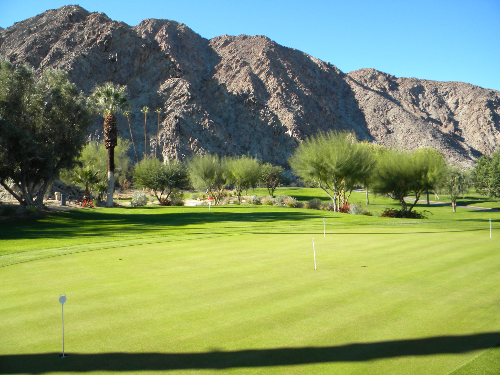 Destination palm springs capping a winning season for Plush pad palm springs