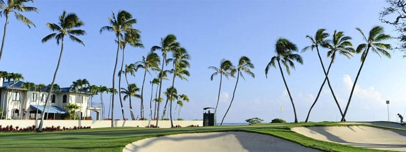 SONY_OPEN_HAWAII_CHICAGO