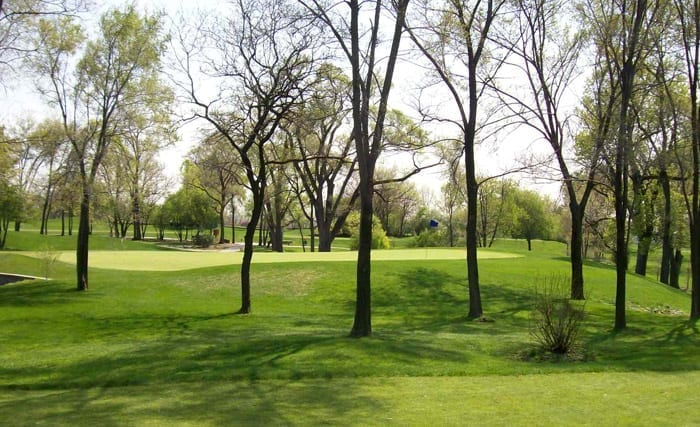 FLAGG-CREEK-5TH-GREEN